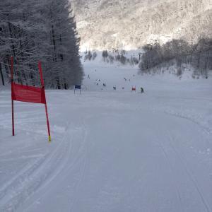 スキー、トップ4 比較