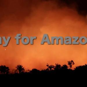 『Pray for Amazonia』