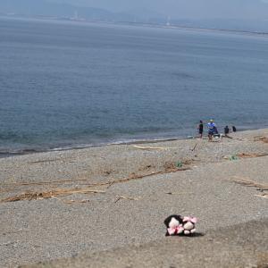 焼津~寸又峡旅行にゃ♥4 海♥