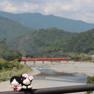 焼津~寸又峡旅行にゃ♥ 奥大井:蒸気機関車トーマス♥2