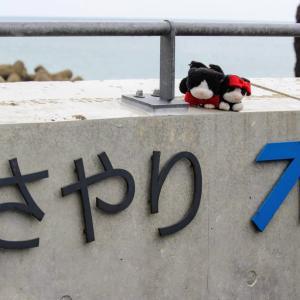ニャンズ東北旅❤26 加茂水族館 海猫さんにゃ♥
