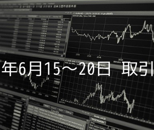 2020年のFX損益状況(6月15日〜20日)