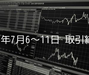 2020年のFX損益状況(7月6日〜7月11日)
