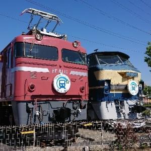 EF66と並んでEF81が保存!さいたま市