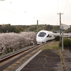 【特集・鉄道と桜】 JR九州 長崎本線 肥前飯田駅