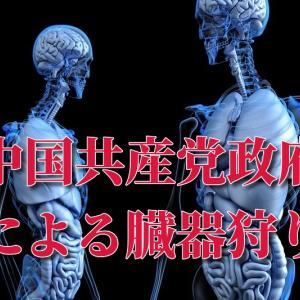 【重要】全ての日本人に知ってほしい「中国による【組織的な移植のための(生きている人から抜く)臓器刈り】」