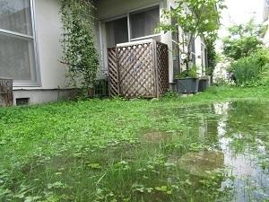 大雨も、コロナも、熱中症も、