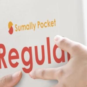 サマリーポケット|部屋が片付く収納サービス|ネットでできる格安荷物整理