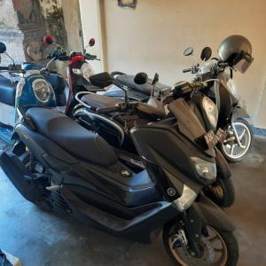 2020年7月17日(金)  初代インドネシアのオートマバイク