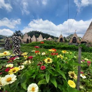 ティルタガンガに出来た巨大ガーデン&キャンプ場(Maha Gangga Valley)@バリ島