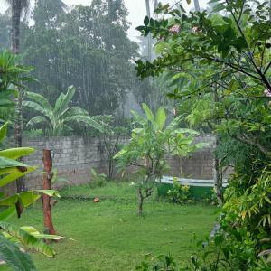 雨季は、雨の少ないアメッドへ行こう!@バリ島