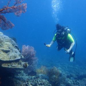 水中で癒やされよう〜!@バリ島アメッド