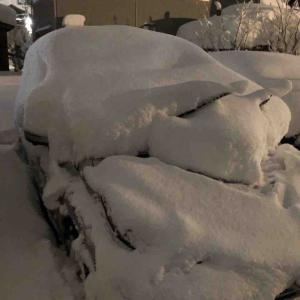 数年に一度の大雪を今シーズン3回も経験 大雪狂騒曲