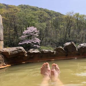 見市(けんいち)温泉旅館@北海道八雲町