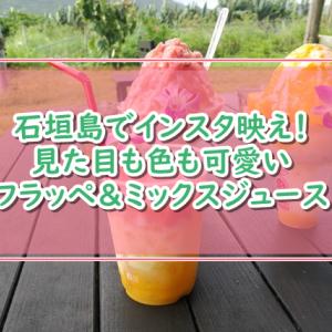 石垣島でインスタ映え満載!素晴らしい景色に新鮮フルーツフラッペが美味の「光楽園」