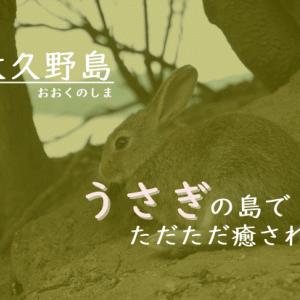 うさぎとひたすら戯れる~!大久野島でのんびり癒し時間