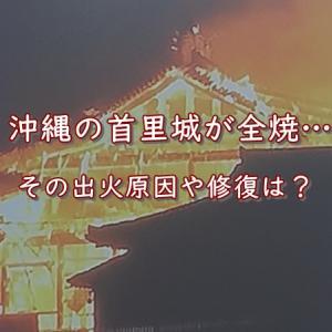 首里城が全焼…原因は?修復は?