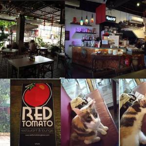 レッドトマトガーデンカフェ(ランカウイ島)