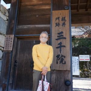 団塊な私─京都・三千院への道