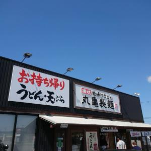 山形県酒田市『丸亀製麺』さん!かけうどん特盛+かき揚げ天、かしわ天。