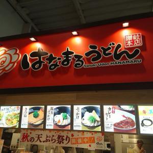 山形県酒田市イオン館内『はなまるうどん』さん!「塩豚おろし、ぶっかけうどん」。