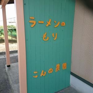 山形県鶴岡市櫛引地区『ラーメンもり』さん!ラーメン大盛。