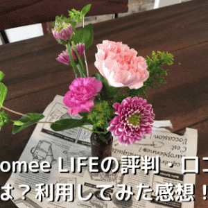 Bloomee LIFEの評判・口コミは?利用してみた感想!