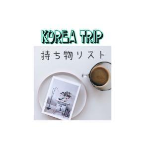 渡韓経験豊富者が教える![行く前に確認すること・持ち物]一挙公開! 韓国旅行を楽しもう