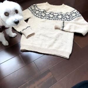ドクロのセーターを作ってみたけれど・・・