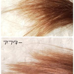 髪質が微妙なわたしの最近のヘアケア