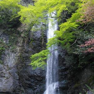 箕面の滝 散策