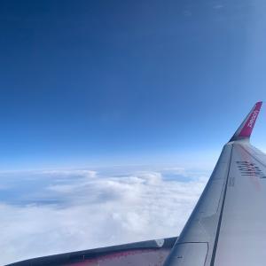 日本へ帰ります