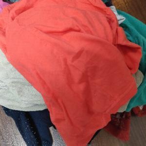見せびらかしたい服ではない衣類系を捨てた。