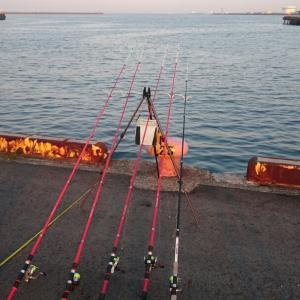 今日はアナゴ釣り‼