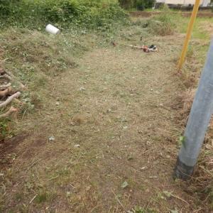 原野と化した薪割り場を手前側からボチボチと整備中