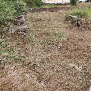 回収した庭木を薪割り場に荷下ろし後、場内整備を実施