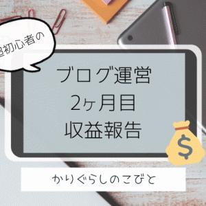 ブログ運営2ヶ月目のPV数と収益報告。アドセンスにも合格!【初心者専業主婦】