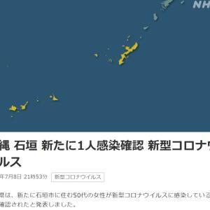 沖縄 石垣 新たに1人感染確認 新型コロナウイルス