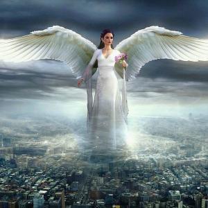 波動を高めると、良い引き寄せをする             天使のくれた奇跡♪angel