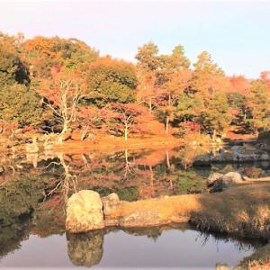 紅葉  京都の嵐山 Arashiyama Kyoto  奈良の葛城山 Osaka   父のこと
