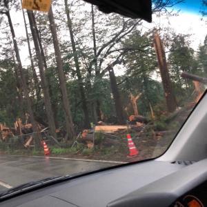 台風15号の被害とは別の被害