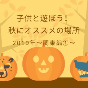 【子供と遊ぼう】秋にオススメの場所 君津市【農溝の滝】まるでジブリの世界観!