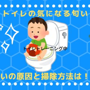 【家のトイレ 匂いの原因】トイレトレーニング中にやった掃除方法・対策は!?