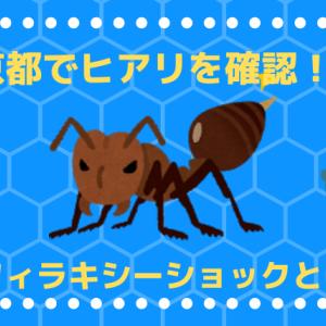 【子供を守ろう】ヒアリが東京都で確認!? アナフィラキシーショックとは?