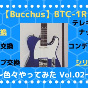 【バッカス テレキャスター】BTC-1R 良い音に育てる! vol.02 ~シリーズ配線~