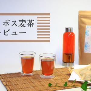 夏の新定番!水出しで飲める【ルイボス麦茶】とは?飲み方・味・口コミ