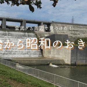 金武ダムとヤマクモー広場で発見!沖縄を知る4つの遺構とは?