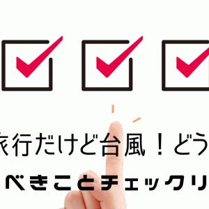 【元旅行会社社員が教える】沖縄旅行の時に台風がきたら?対応方法とやるべきことチェックリスト