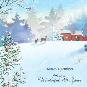 クリスマスとかお正月とかめんどくさいだけ