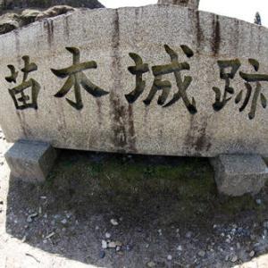 苗木城(岐阜県)④検査キット